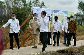 Mentan SYL Dampingi Presiden Tinjau Lokasi Pengembangan Lumbung Pangan Nasional