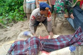 Korban Jiwa Banjir Bandang Luwu Utara Sudah 21 Orang