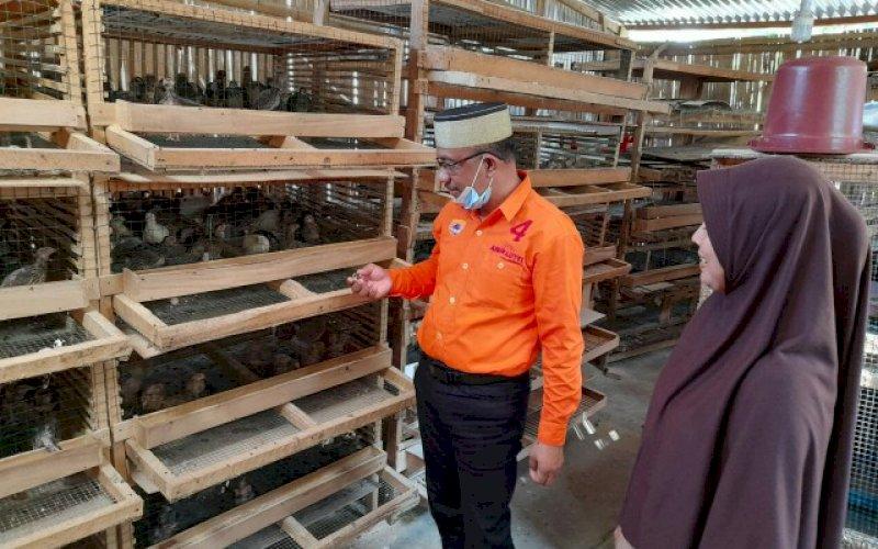 KUNJUNGAN. Calon Wakil Bupati Pangkep, Lutfi Hanafi mengunjungi peternakan burung puyuh milik Riska, di Kampung Lakaddaro, Kelurahan Ma'rang, Kecamatan Ma'rang, Rabu (21/10/2020). foto: istimewa