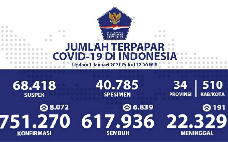 Data Covid-19 Indonesia. foto: istimewa