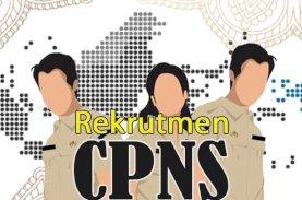 Kementerian PANRB: Tidak Ada Pengangkatan CPNS Tanpa Tes