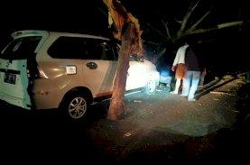 SAR Brimob Bone Gerak Cepat Evakuasi Pohon Tumbang di Jalan
