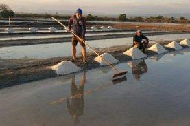 Dengar Rintihan Petani Garam, Warga Jeneponto: Andi Sudirman Berpihak ke Rakyat Kecil