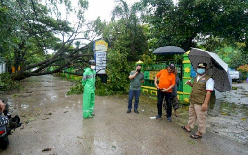 PENINJAUAN. Plt Sulsel, Andi Sudirman Sulaiman (kanan), memantau situasi adanya pohon tumbang dampak hujan deras dan angin kencang, Jumat, (2/42021). foto: humas pemprov sulsel