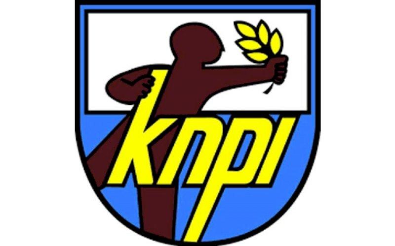 Logo KNPI. foto: ilustrasi