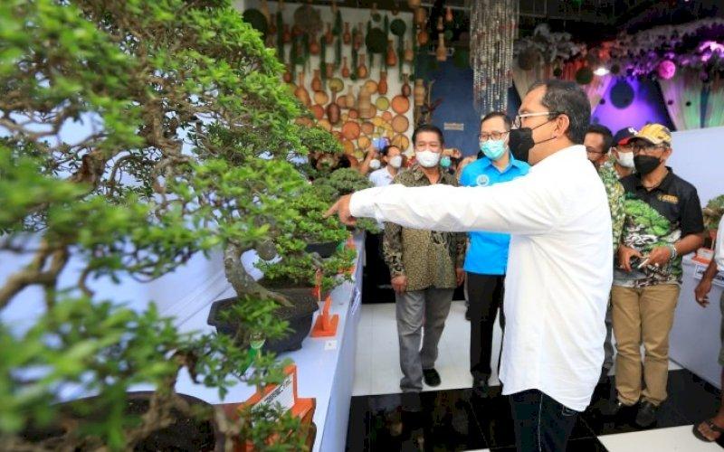 PAMERAN BONSAI. Wali Kota Makassar, Moh Ramdhan Pomanto, menyaksikan keindahan salah satu bonsai yang dipamerkan dalam pameran dan kontes bonsai nasional yang diadakan PPBI di Jl Gontang Raya, Kota Makassar, Jumat (28/5/2021). foto: humas pemkot makassar