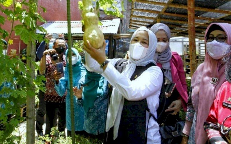 LOMBA UMKM. Wakil Wali Kota Makassar, Fatmawati Rusdi, menghadir lomba UMKM Lorong yang diadakan di Kelurahan Mallimongan, Kecamatan Wajo, Kota Makassar, Kamis (30/9/2021). foto: istimewa