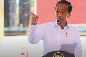 Presiden Inginkan Porsi Indonesia Lebih Banyak dari Smelter Freeport di Gresik